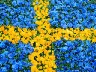 "Stories from Sweden, the ""Humanitarian Superpower"""