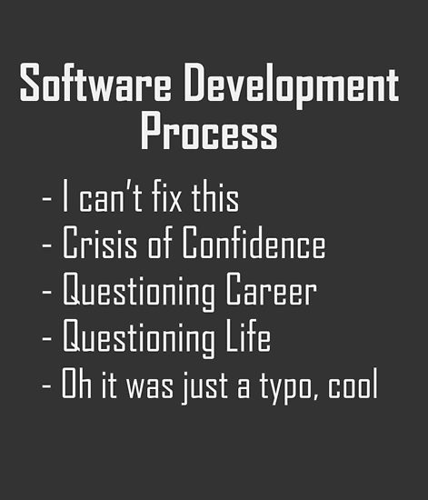 Software Dev Process