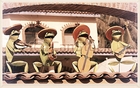 Frog Mariachi band playing instruments
