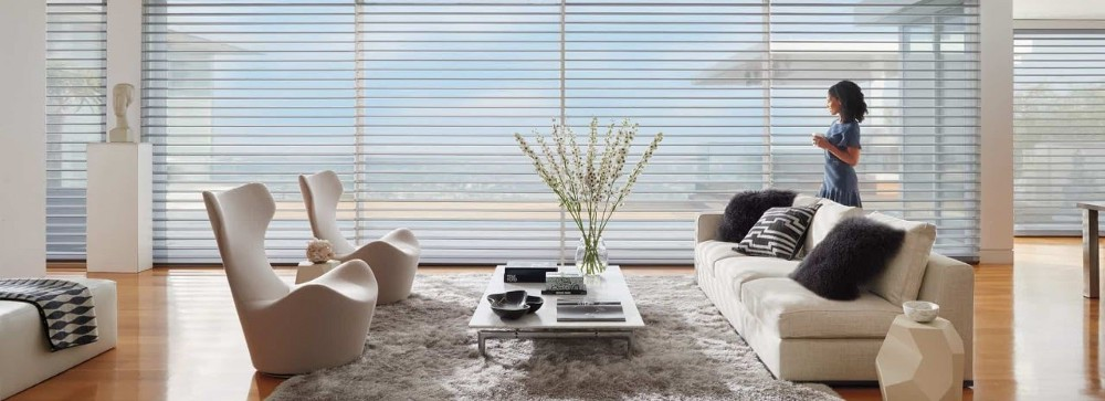 Modern and Sophisticated Window Shadings