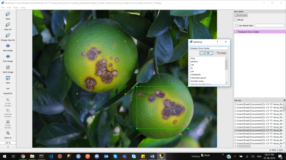 Leaf Disease Detection Using Image Processing Github
