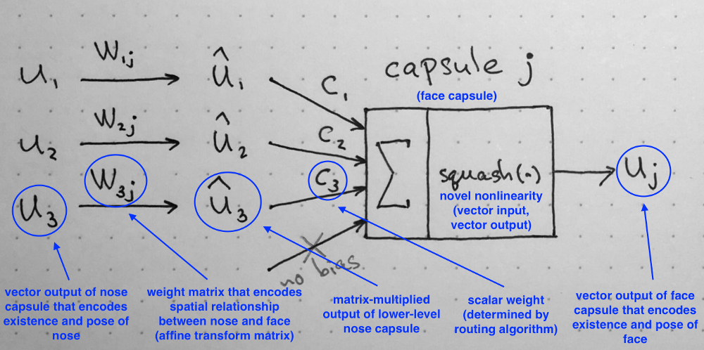 Diagram 6: Summary of the internal workings of the capsule. Note that there is no bias because it is already included in the W matrix that can accommodate it and other, more complex transforms and relationships.