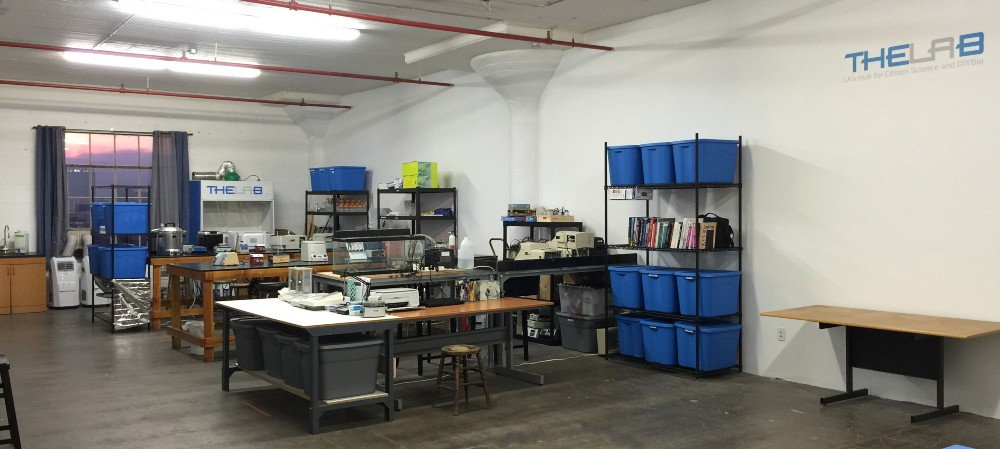how the diybio community is building the infrastructure for the next generation of scientists as well as the next big discovery