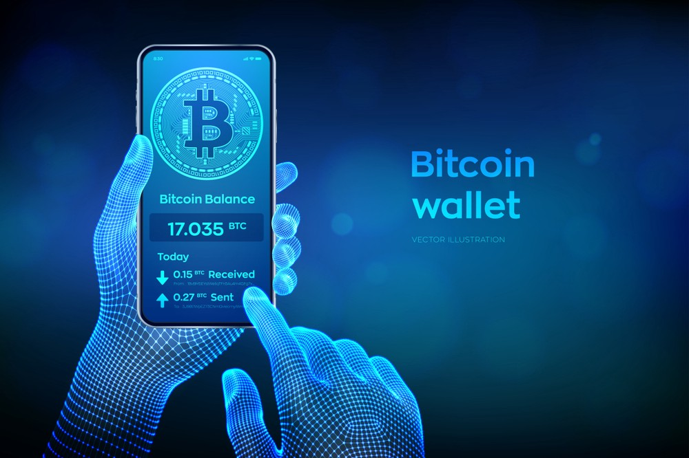Learn how are Cryptocurrency Wallets working to secure your capital