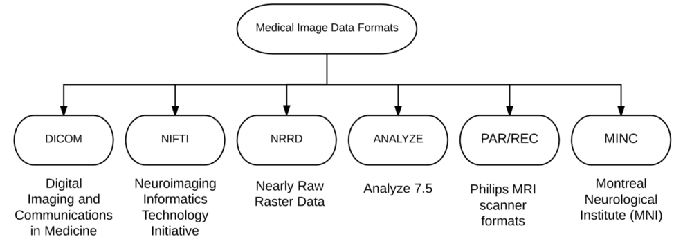 Medical Image Analysis with Deep Learning , Part 4