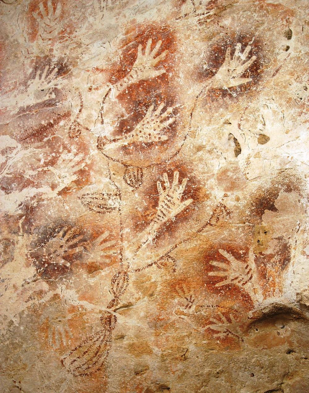 Cave painting in Borneo, Indonesia