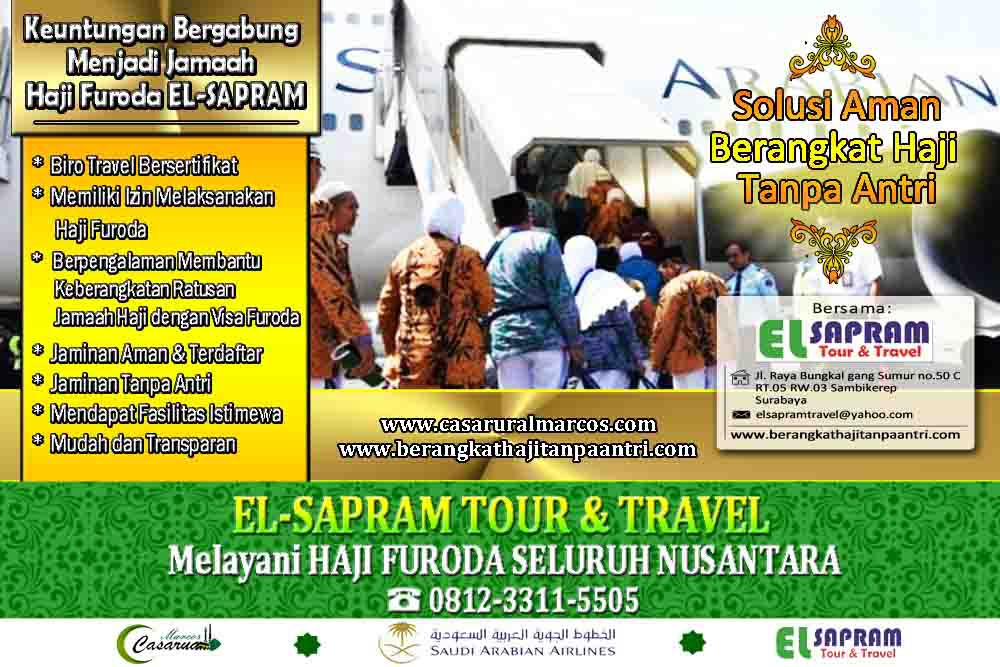 50 plus travel tours