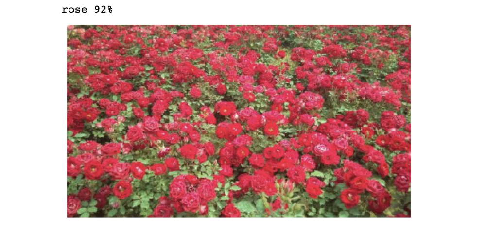 """Three models for Kaggle's """"Flowers Recognition"""" Dataset – mc ai"""