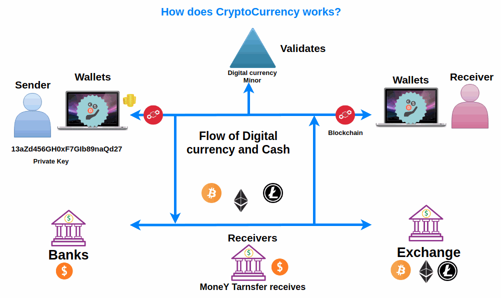 What Is Crypto Wallets And How Can You Build It Coin5s