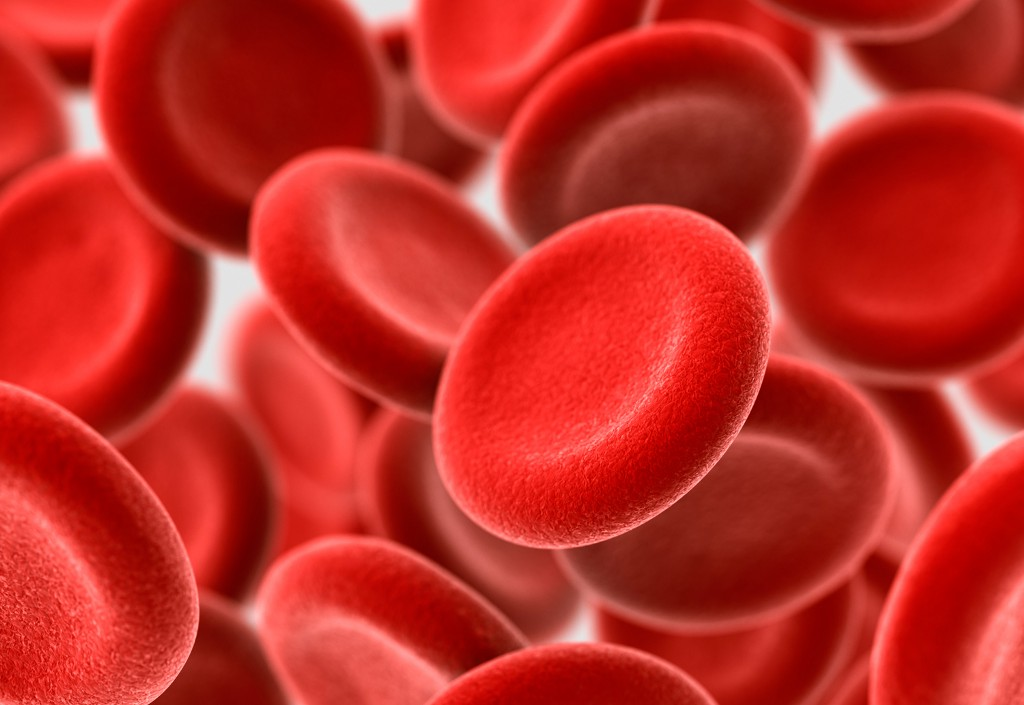 Learning About Our Blood Cells Could Help Prevent Aging