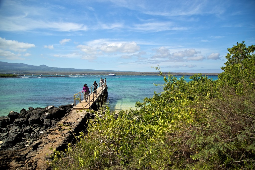 Photos Of The Galápagos Image: A group of travellers walks on a wooden pier—turquoise waters are behind them.
