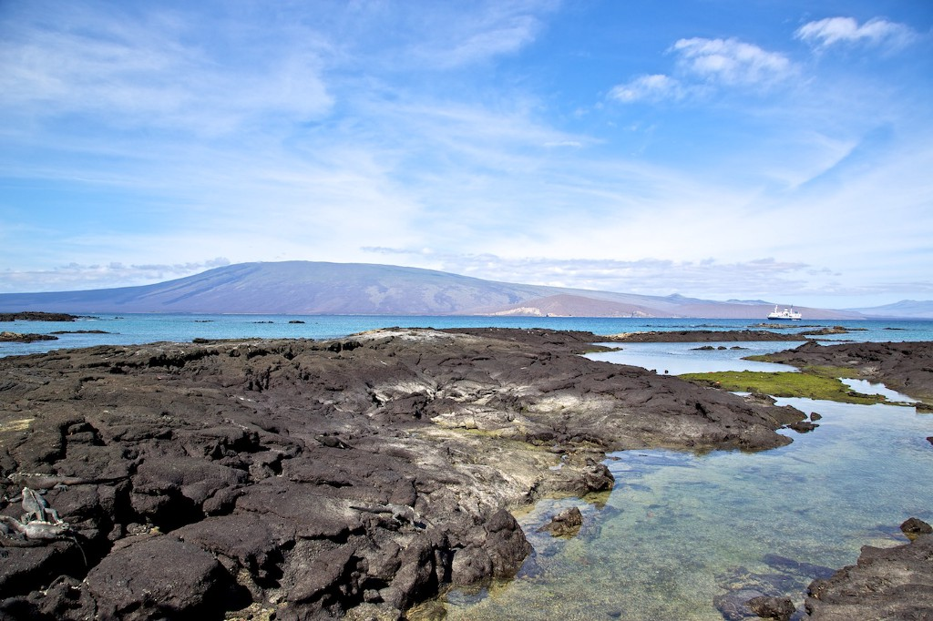 Photos Of The Galápagos Image: A photograph of a rocky Galápagos landscape dappled with shallow pools. The sky is blue, and there is a land mound in the background.