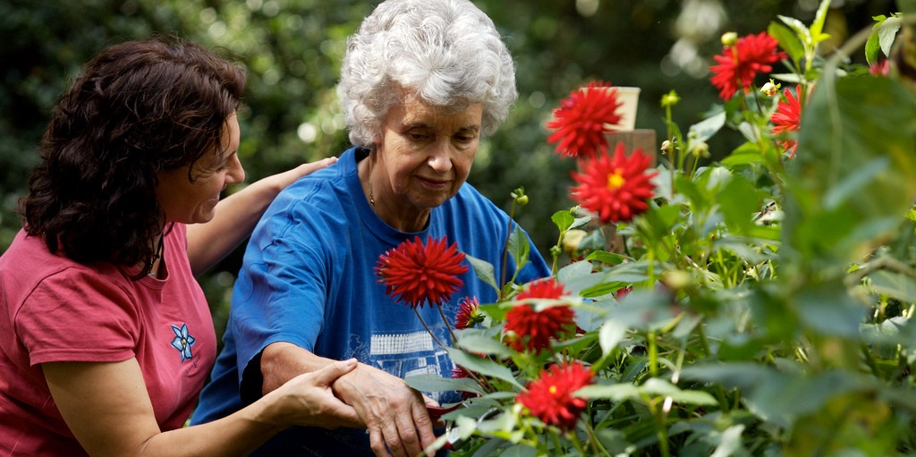 garden therapy for depression arthritis and stress relief - Garden Therapy