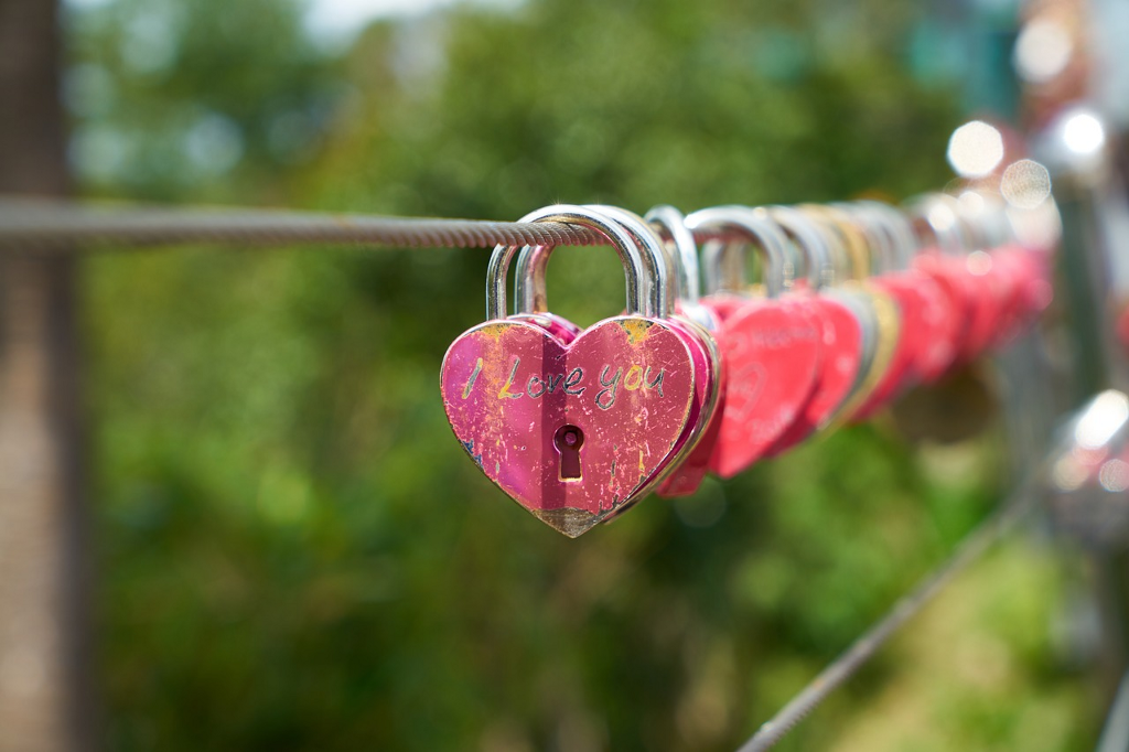 fence wire with heart locks attached.