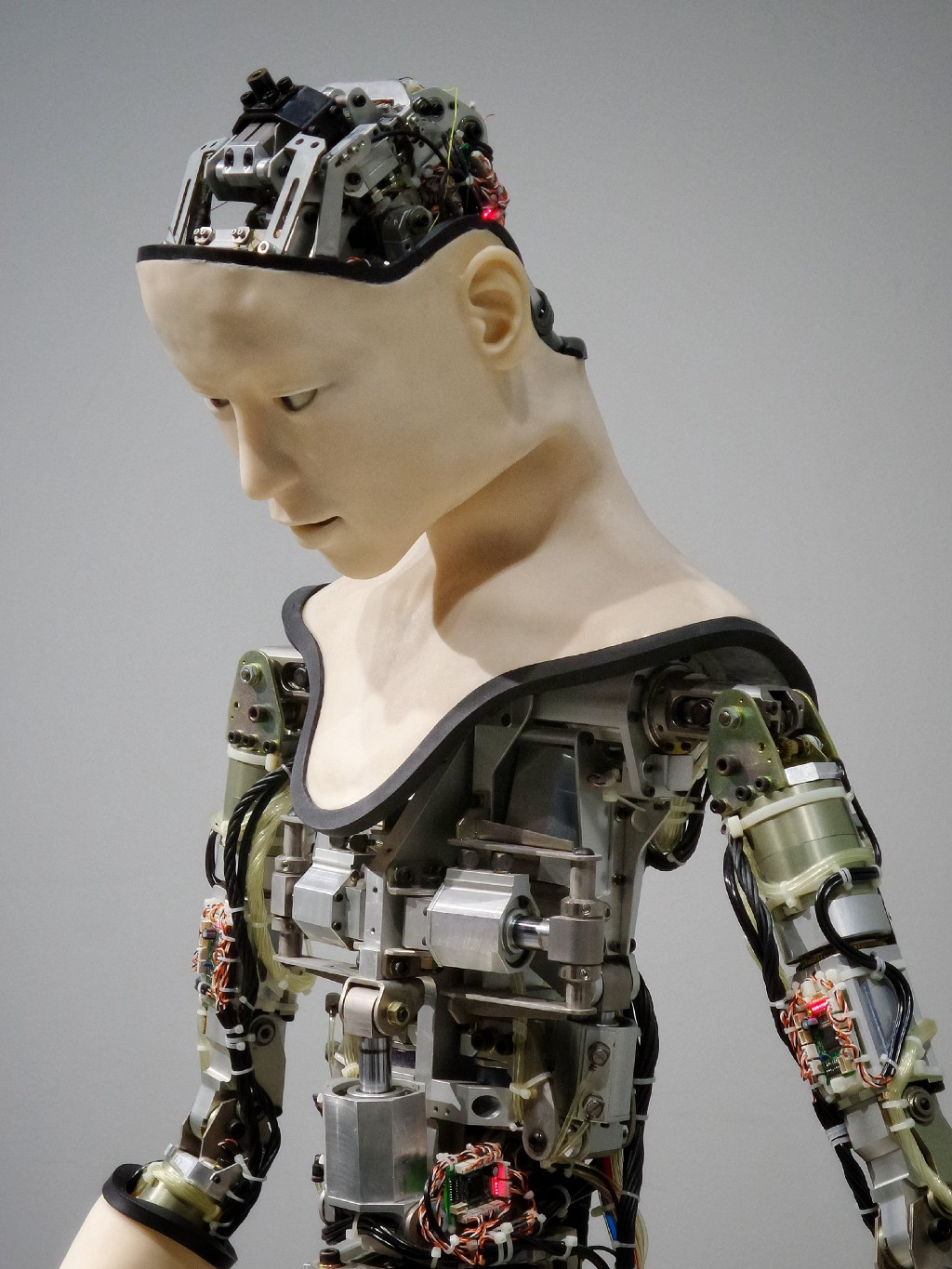 The Human-power Behind AI: Machine Learning Needs Annotators
