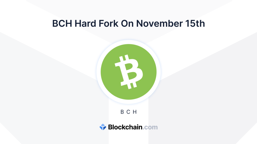 A note on the Bitcoin Cash fork on 15 November 2020
