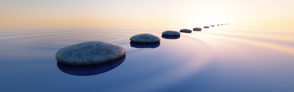 Living a Life of Purpose: Going Beyond Work-Life Balance to Find Your Life's Work
