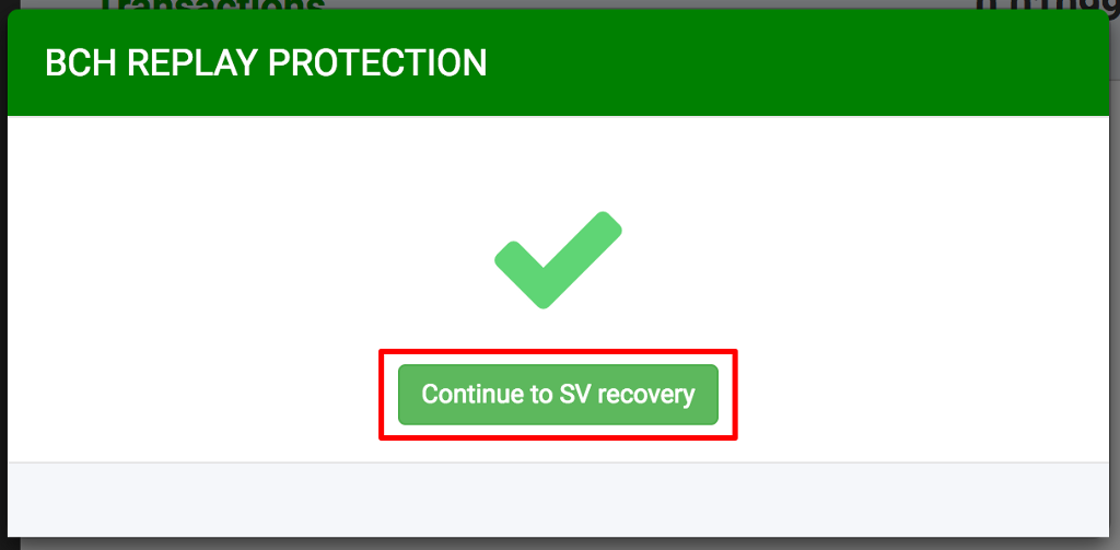 Replay Protection and BSV Extraction tool