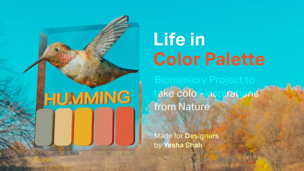 Life in Color Palette: Use colors from nature in your project