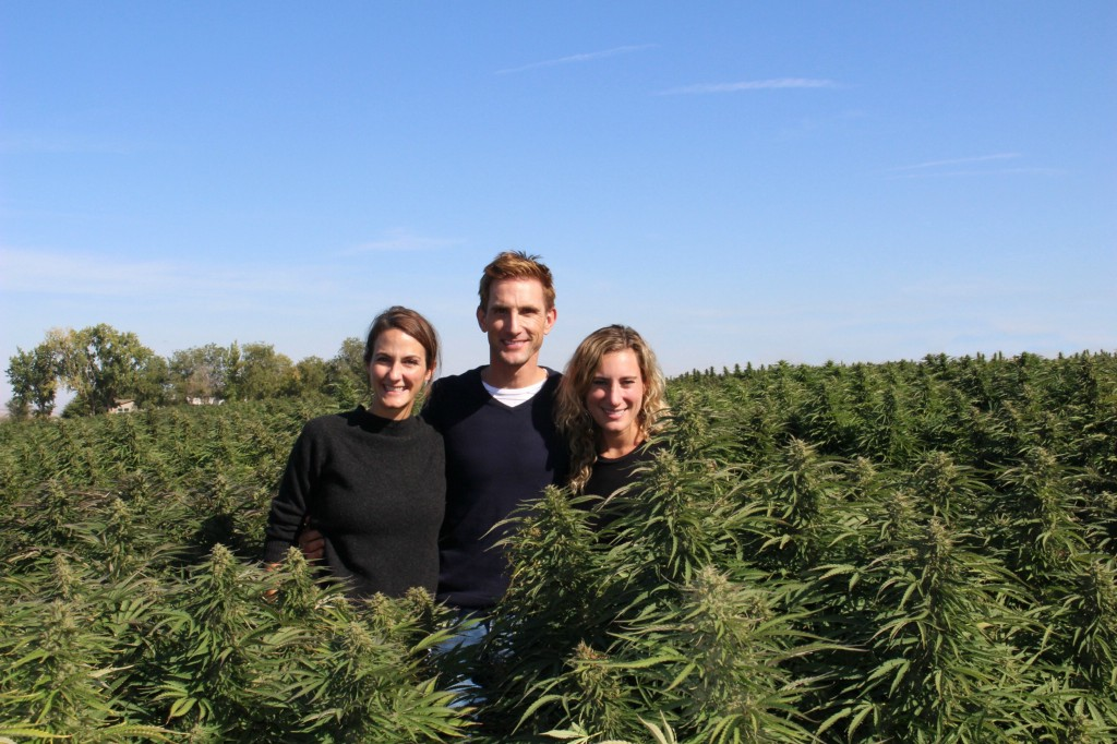 The B Corps Leading the Way for the Cannabis Industry to Join the Movement