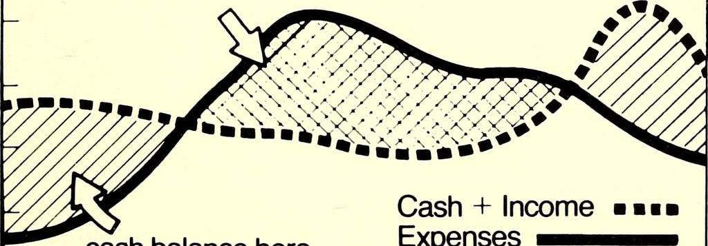 cash flow theory
