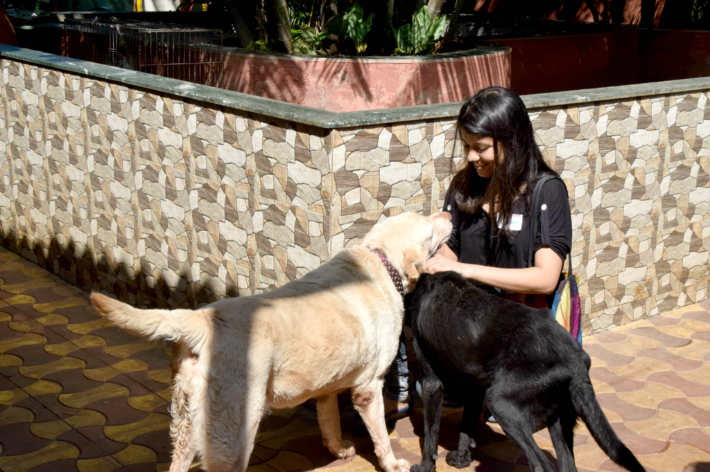 Date with Dogs at Thane SPCA - ConnectFor