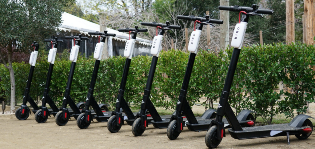 The Truth About the Scooter Economy—An Insider's Perspective