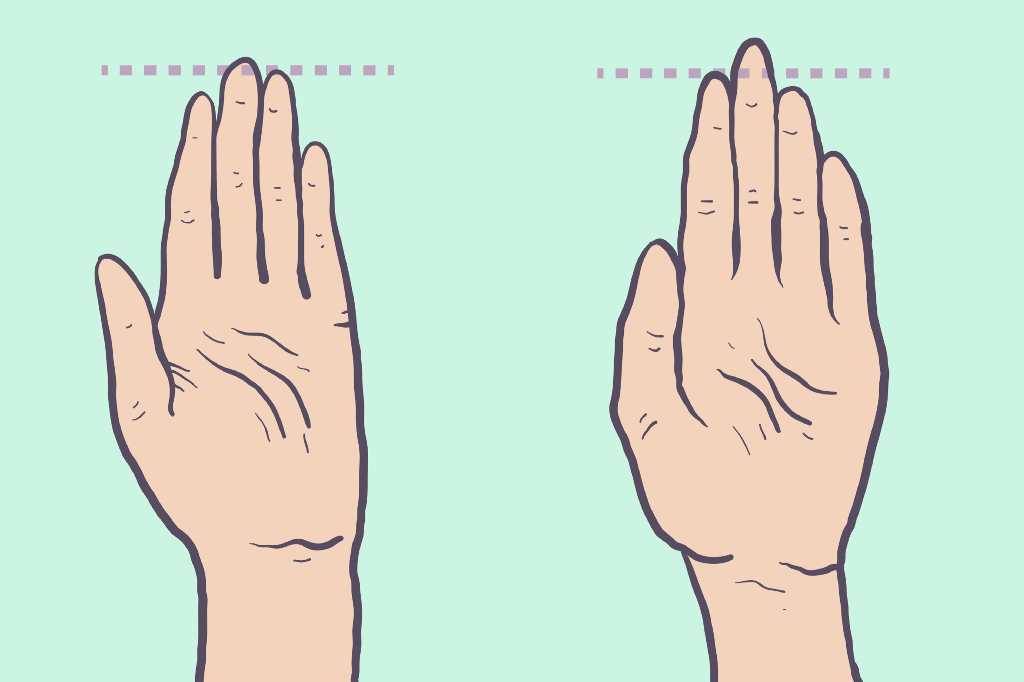 Does Your Finger Length Predict Your Sexuality? – OMGFacts