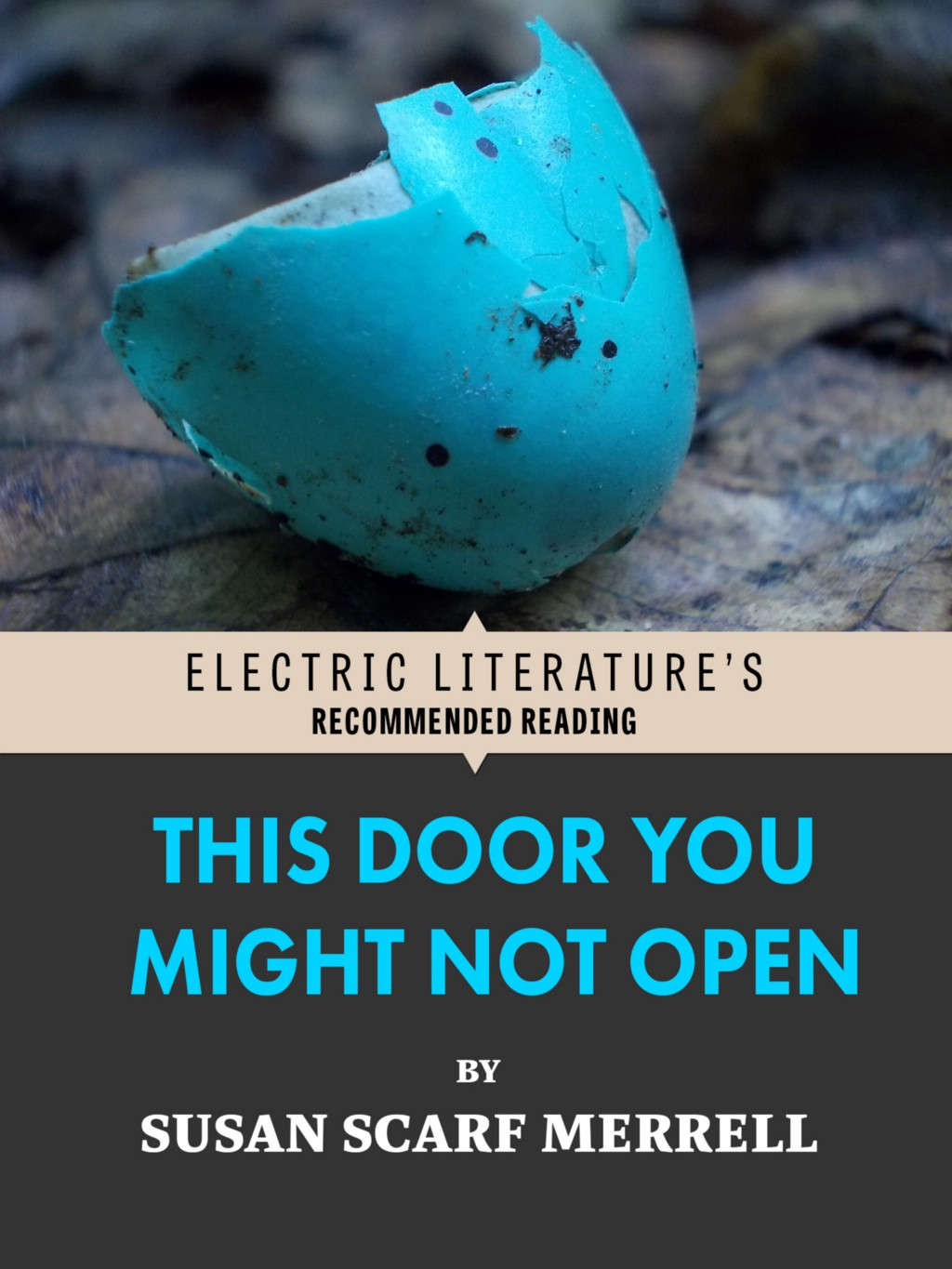 Page 268 – Electric Literature