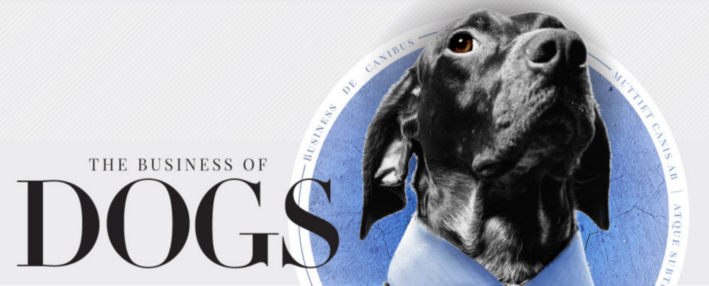 In Dog We Trust: A Look at the Dog Economy