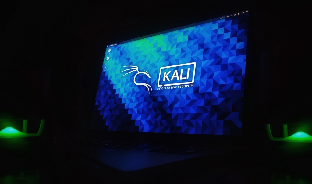 A Comprehensive Guide to Kali Linux: Essentials and Beyond