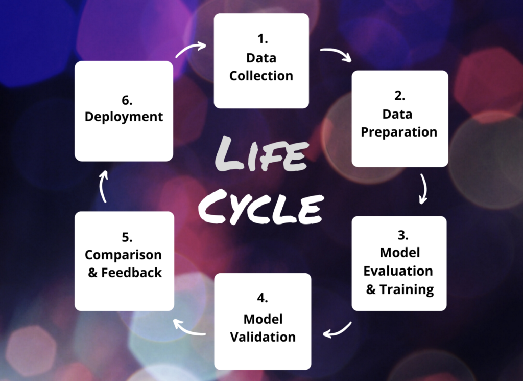 Applied Machine Learning Life Cycle for Computer Vision Tasks