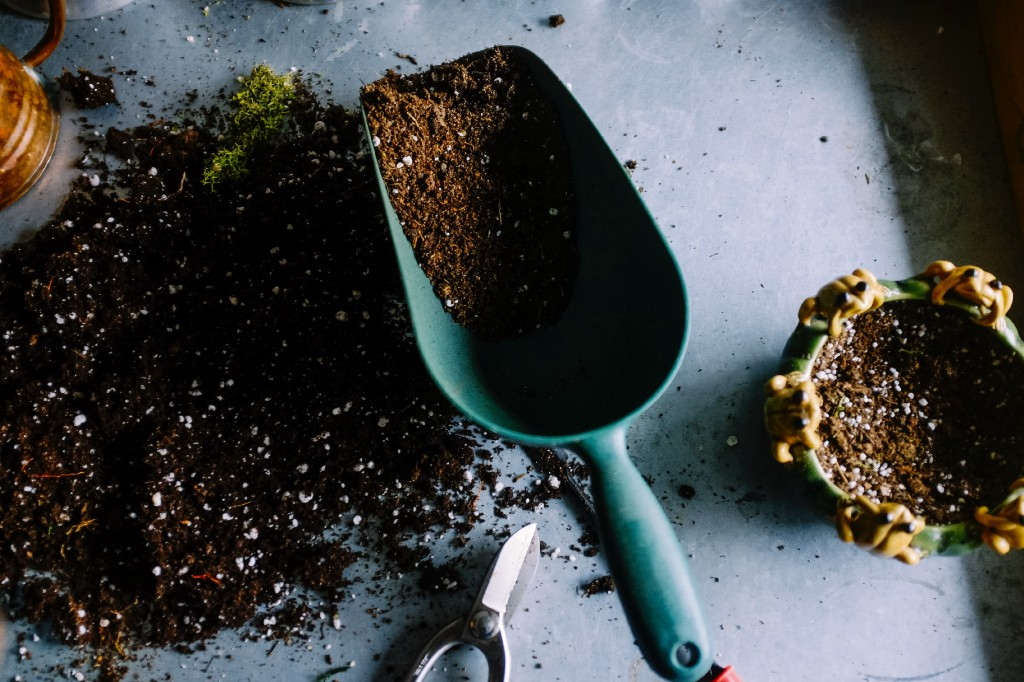 Learn the Art of Worm Composting To Recycle Your Own Food Scraps