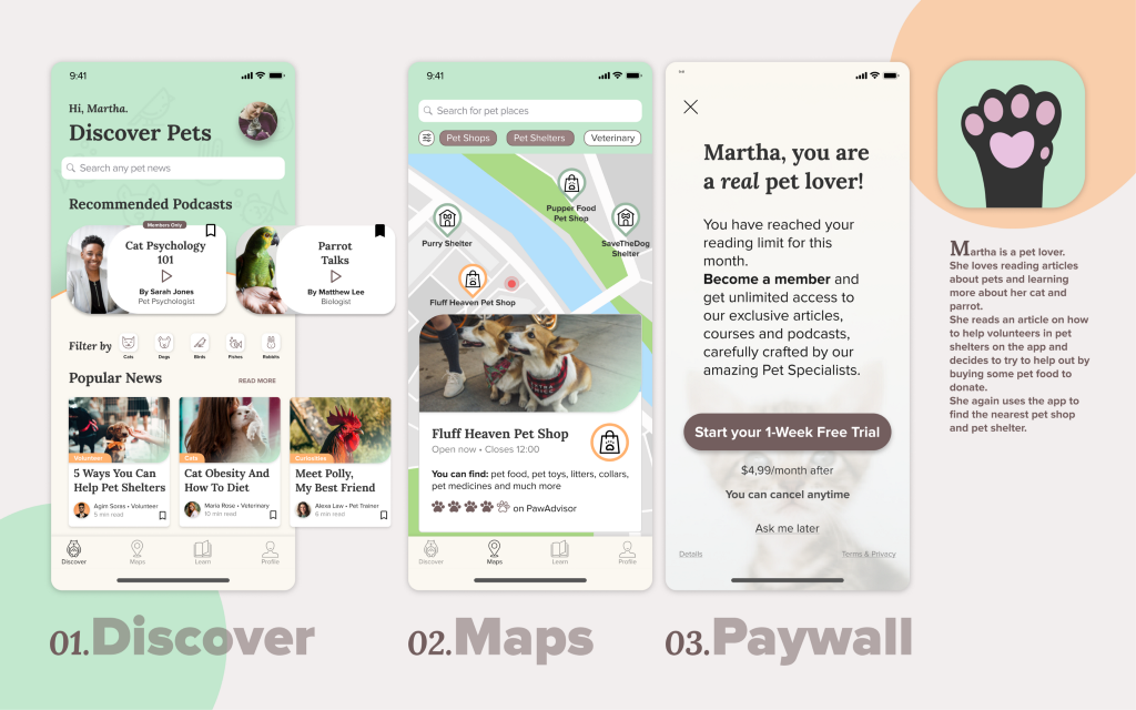 The final poster with Discover, Maps and Paywall screen and the app logo