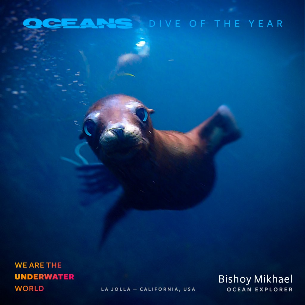 1*dPVdctnihA1EdMfHZttj4g Dive of the Year Awards 2018 presented by Fabien Cousteau