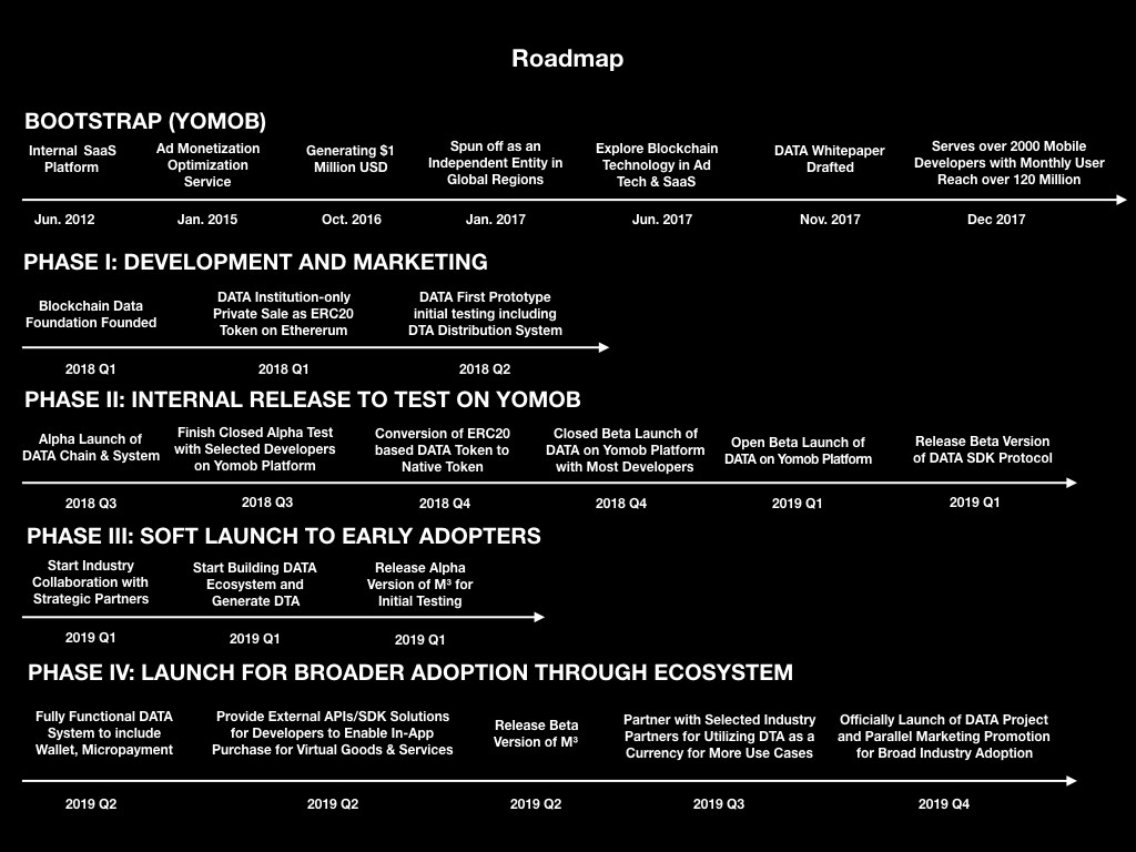 data detailed roadmap