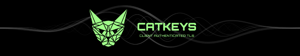 Securing Node services using Client Authenticated TLS with CATKeys