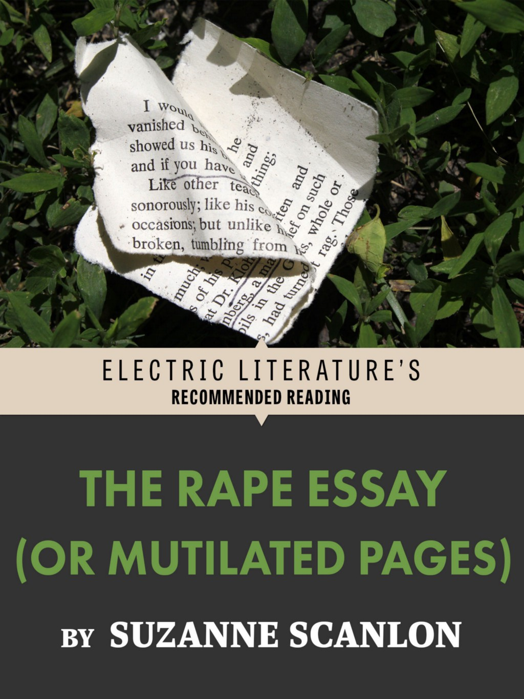 """The Rape Essay (Or Mutilated Pages)"""" by Suzanne Scanlon"""
