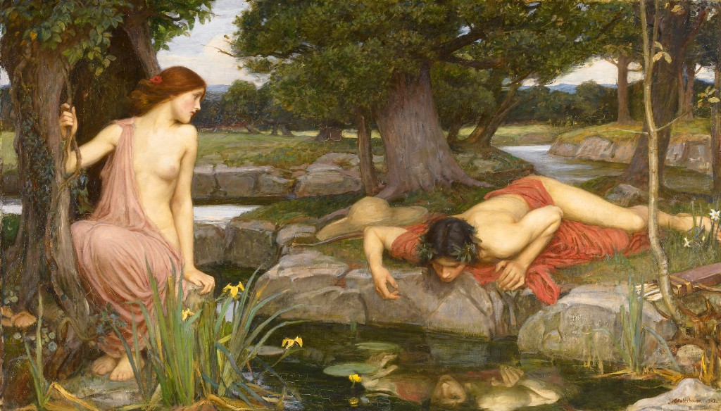 The Narcissus fallacy in product design