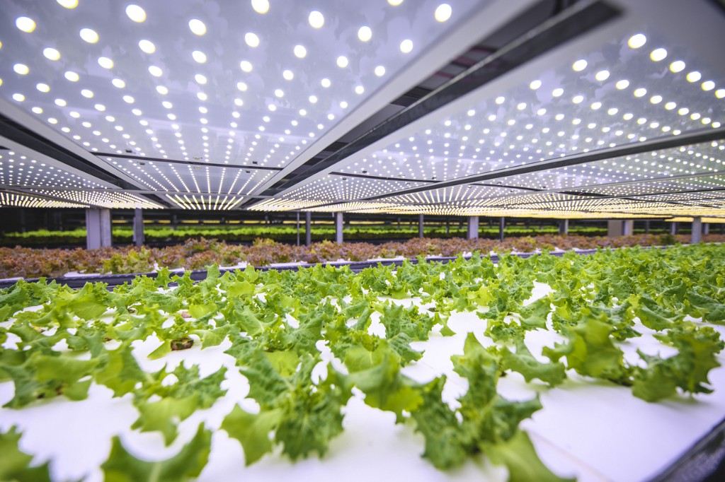 The Growing Need for Agtech