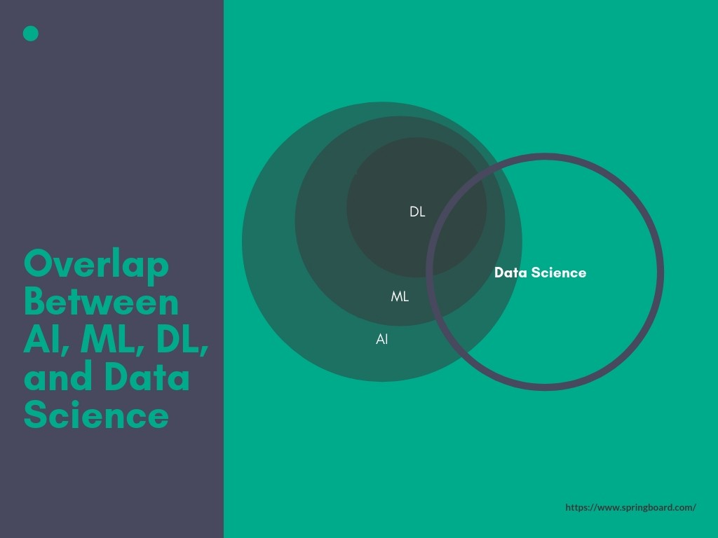 What's the difference between data science and machine
