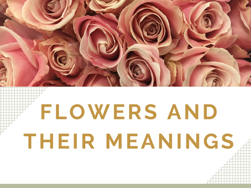 Flowers And Their Meanings Nitish Rana Medium