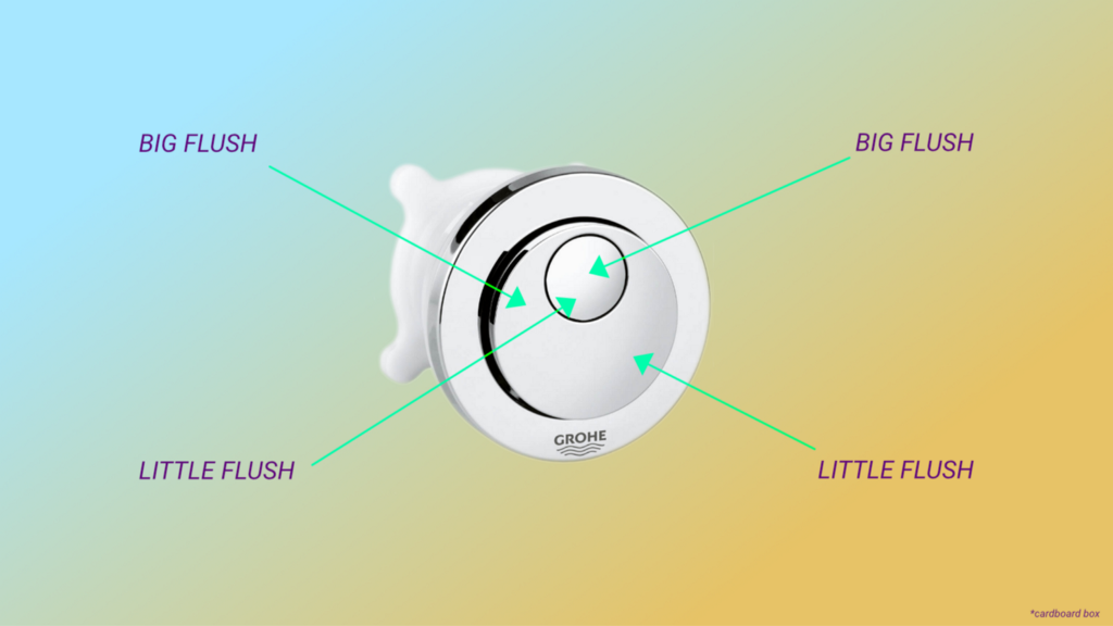 The toilet flush mechanism made up of a two concentric circular buttons and no labels to explain the functionality