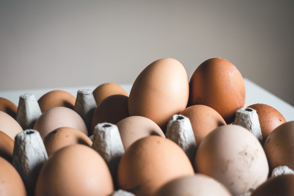 The chicken-egg marketing dilemma: tackling the vicious cycle in CSR campaigns in Portugal