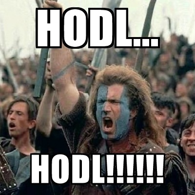 Image result for hodl meme