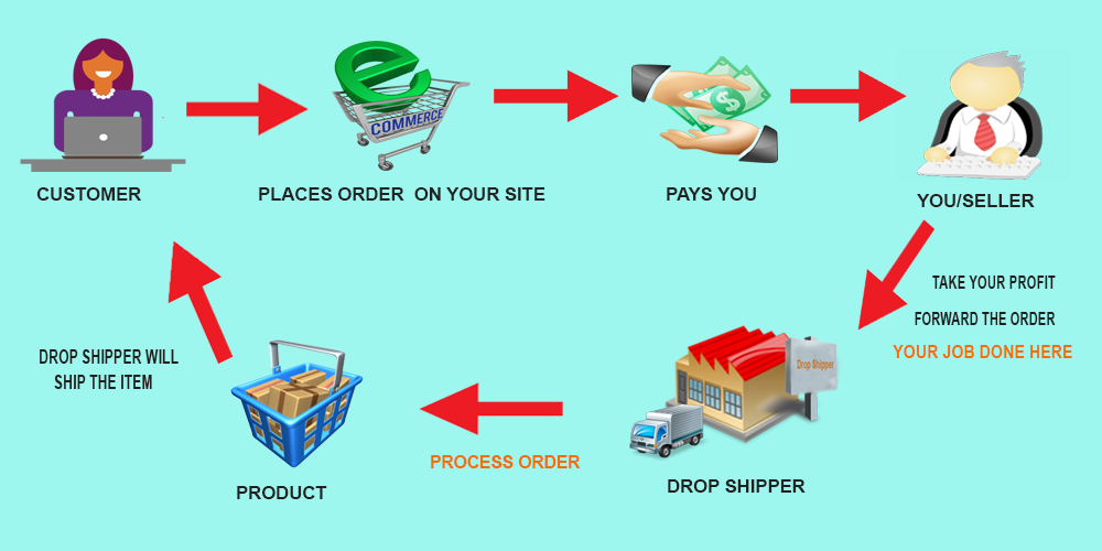 Definitive Guide to Becoming a Successful Drop shipper—Introduction