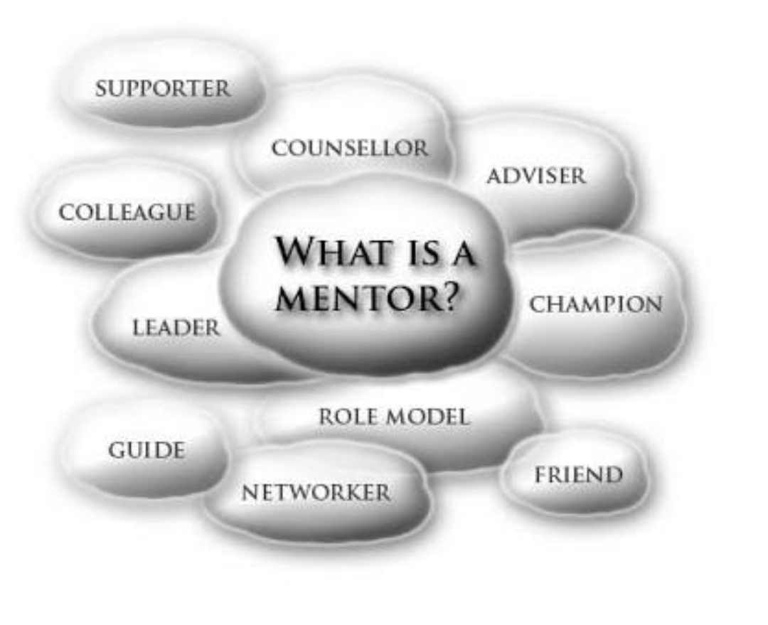 Getting a Mentor is the shortcut