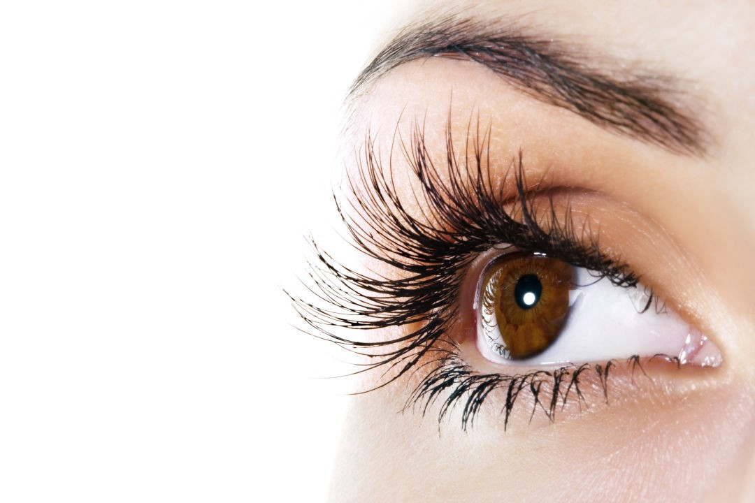Best Eyebrow Lash And Brow Tinting In Jacksonville Fl