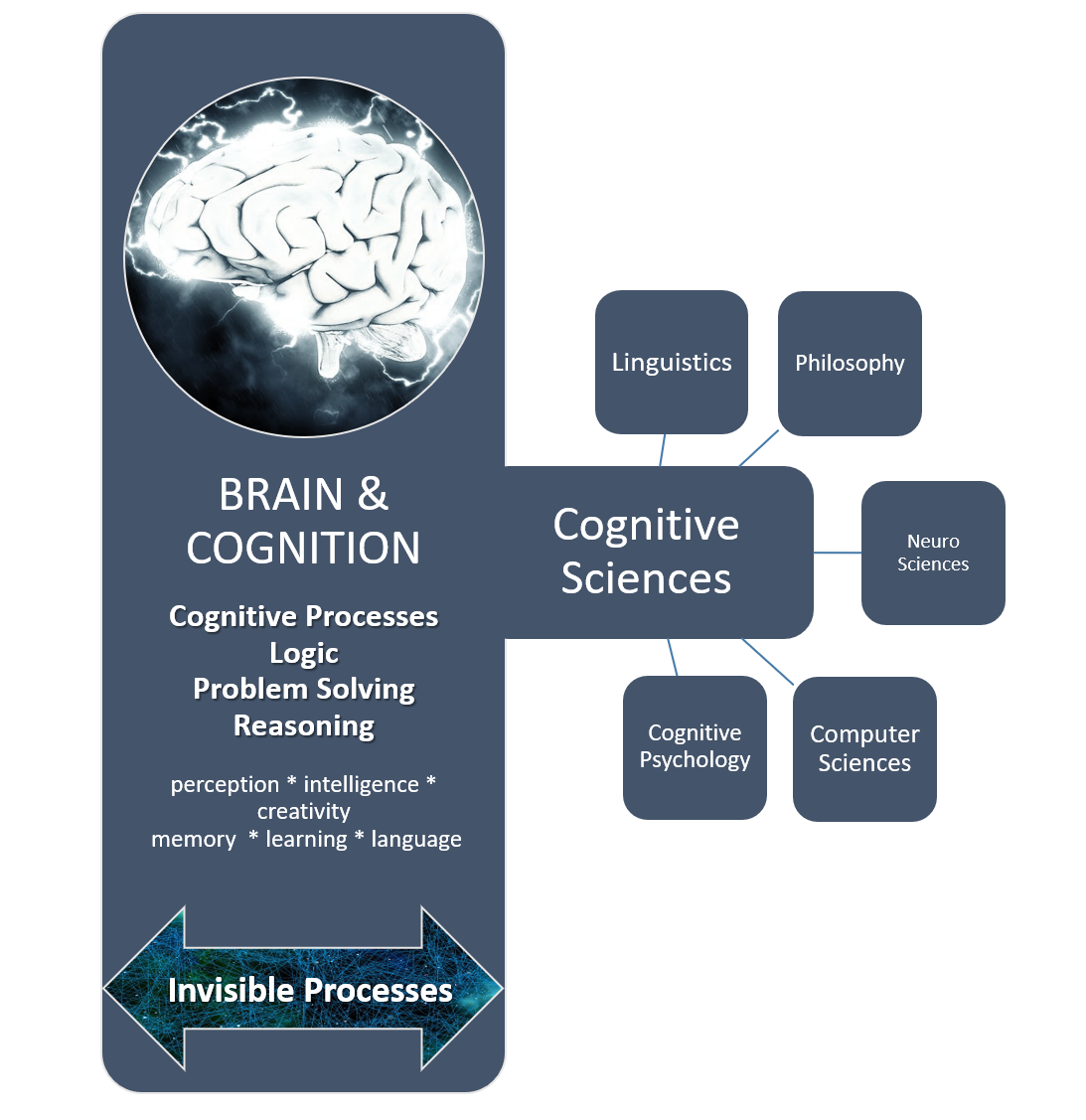 Methods of psychology in the cognition of human mental activity