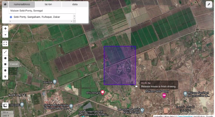 Google Earth Engine image with area of interest polygon